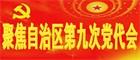 中國共産黨新疆維吾爾自治區第九次代表大會