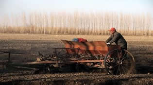 新湖農場3.5億元資金助力春耕生産
