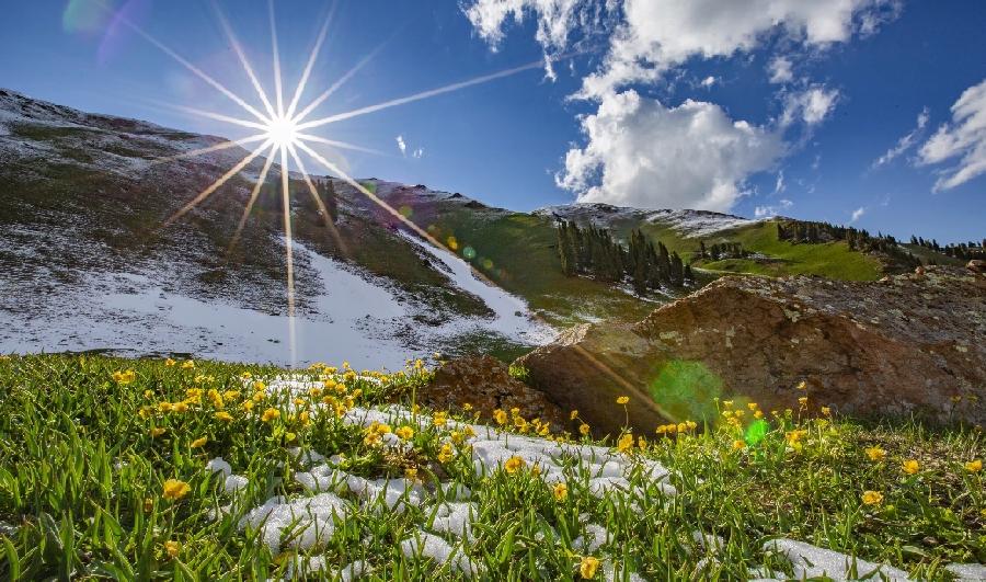 新疆是個好地方|面朝雪山 草原花開